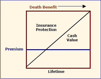 How much whole life insurance cost 2014